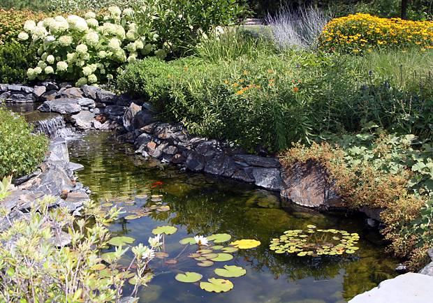 pools-water-features-landscape-design-007