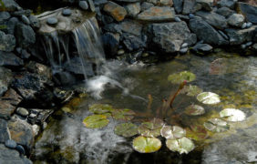 landscaping-fire-water-features (4)