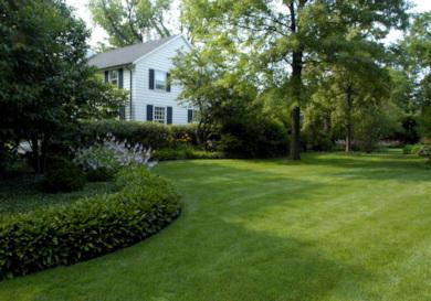 Irrigation & Lighting Services